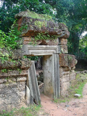 taprohm-galerie-15