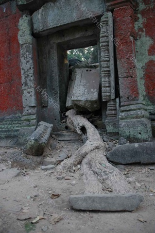 taprohm-galerie-19