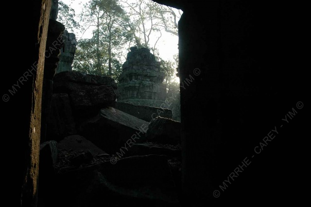 taprohm-galerie-3