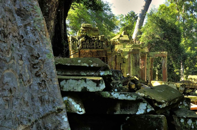 taprohm-galerie-5