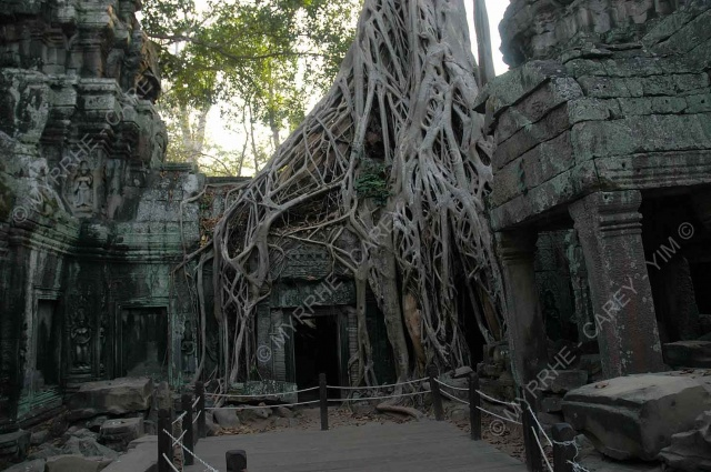 taprohm-galerie-6