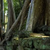 taprohm-galerie-1