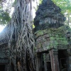 taprohm-galerie-12