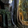 taprohm-galerie-14