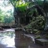 taprohm-galerie-16