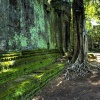 taprohm-galerie-18