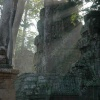 taprohm-galerie-2