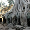 taprohm-galerie-7