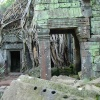 taprohm-galerie-9