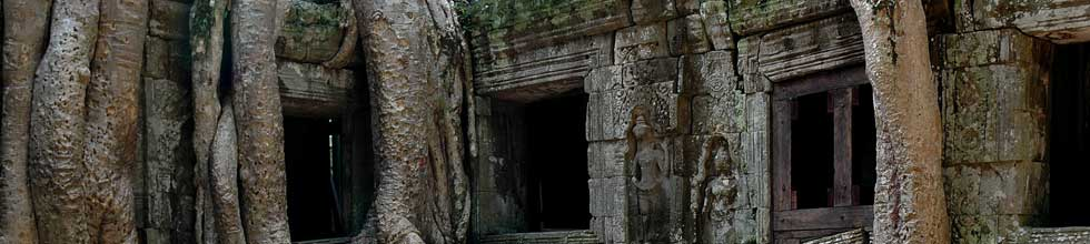top-ta-prohm.jpg